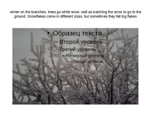 winter on the branches, trees go white snow. well as watching the snow to go