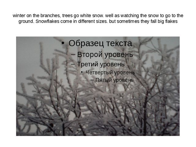 winter on the branches, trees go white snow. well as watching the snow to go...