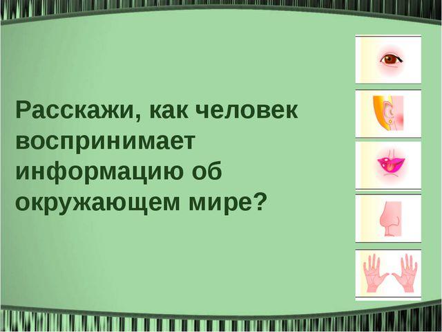 Расскажи, как человек воспринимает информацию об окружающем мире?