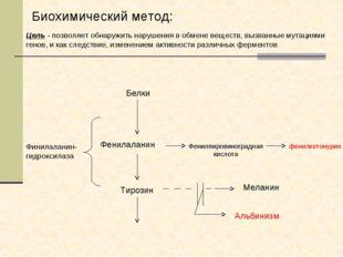 Финилаланин-гидроксилаза Белки Фенилаланин Тирозин Фенилпировиноградная кисло