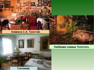 Гостиная. Любимая скамья Толстого.