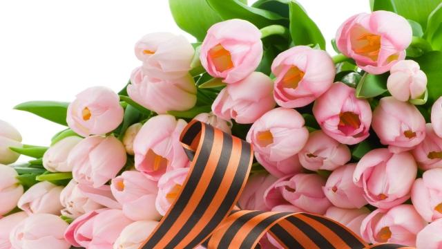 Обои тюльпаны, цветы, букет, весна, георгиевская лента