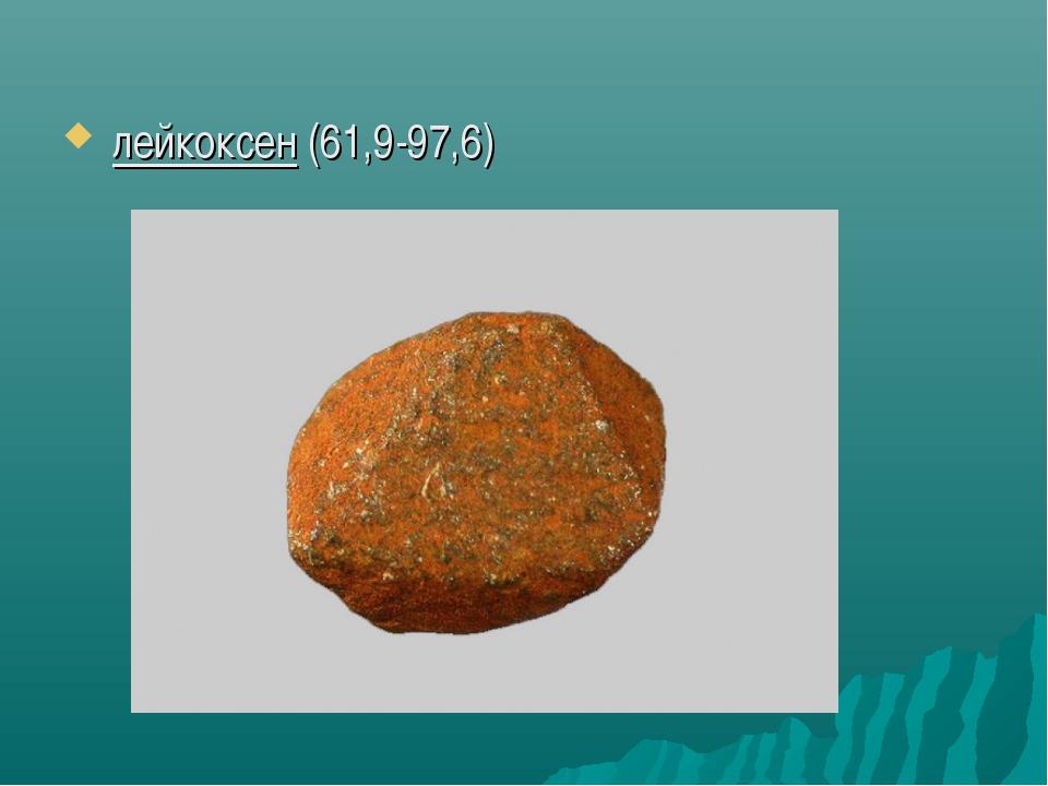 лейкоксен(61,9-97,6)