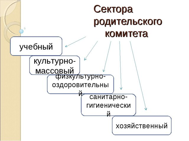 Сектора родительского комитета учебный культурно-массовый санитарно-гигиениче...