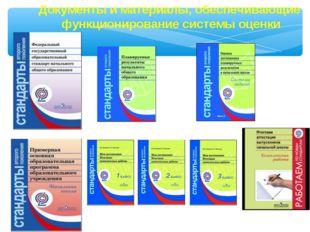 Документы и материалы, обеспечивающие функционирование системы оценки