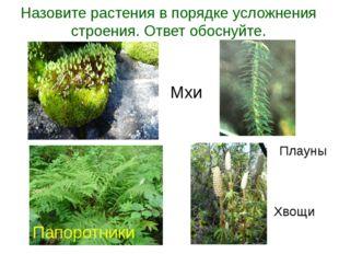 Назовите растения в порядке усложнения строения. Ответ обоснуйте. Папоротники