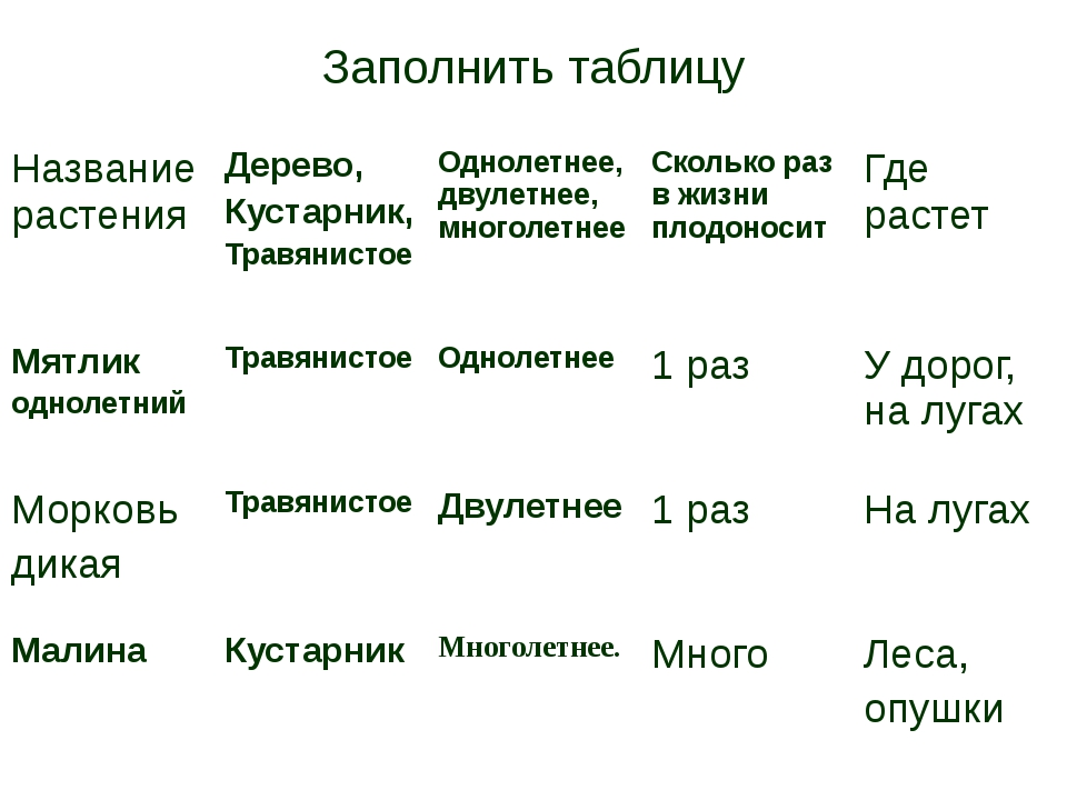 Заполнить таблицу Название растения Дерево, Кустарник, Травянистое Однолетнее...