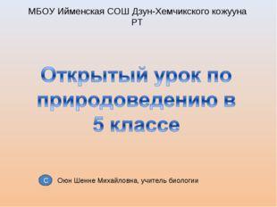 МБОУ Ийменская СОШ Дзун-Хемчикского кожууна РТ Оюн Шенне Михайловна, учитель