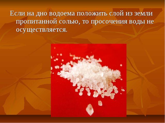 Если на дно водоема положить слой из земли пропитанной солью, то просочения в...