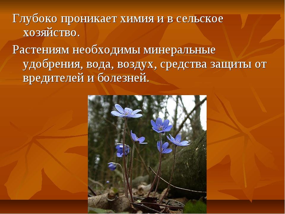 Глубоко проникает химия и в сельское хозяйство. Растениям необходимы минераль...