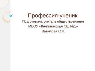 Профессия-ученик. Подготовила учитель обществознания МБОУ «Княгининская СШ №1