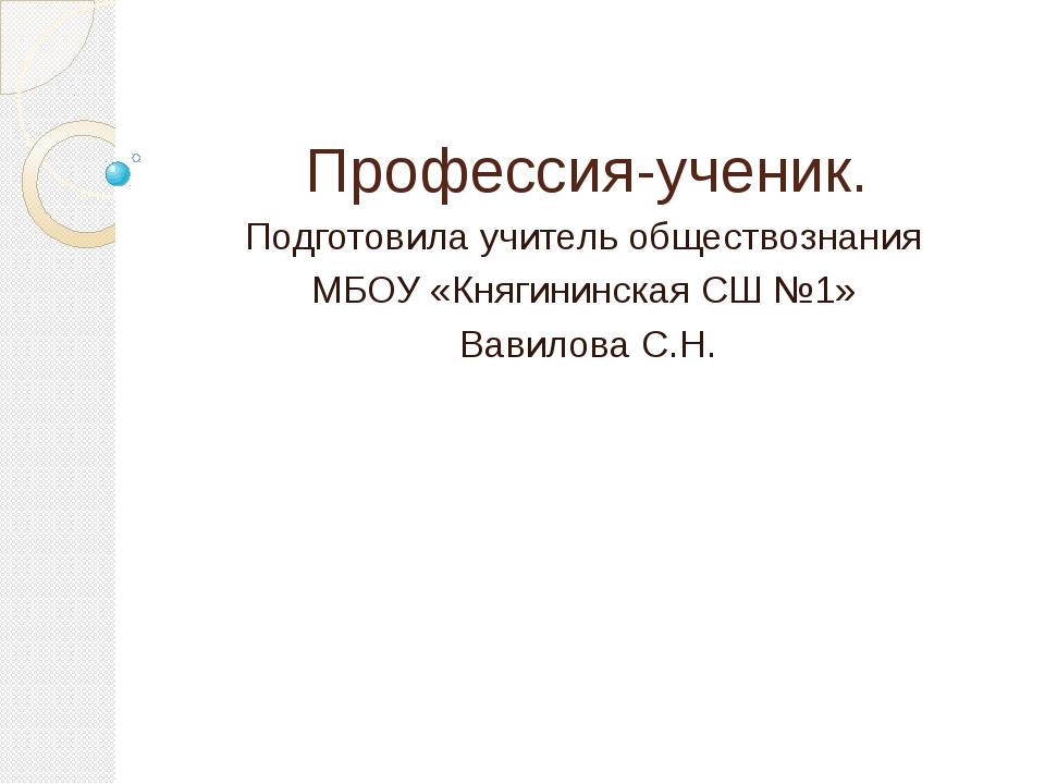Профессия-ученик. Подготовила учитель обществознания МБОУ «Княгининская СШ №1...