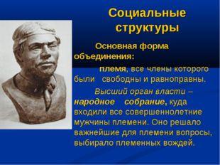 Социальные структуры Основная форма объединения: племя, все члены которого бы