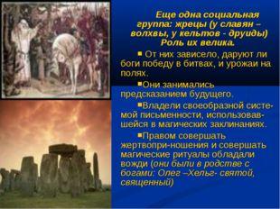 Еще одна социальная группа: жрецы (у славян – волхвы, у кельтов - друиды) Рол
