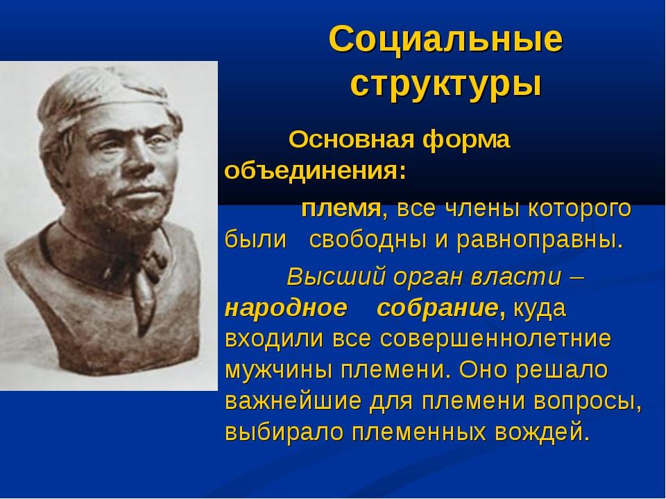 Социальные структуры Основная форма объединения: племя, все члены которого бы...