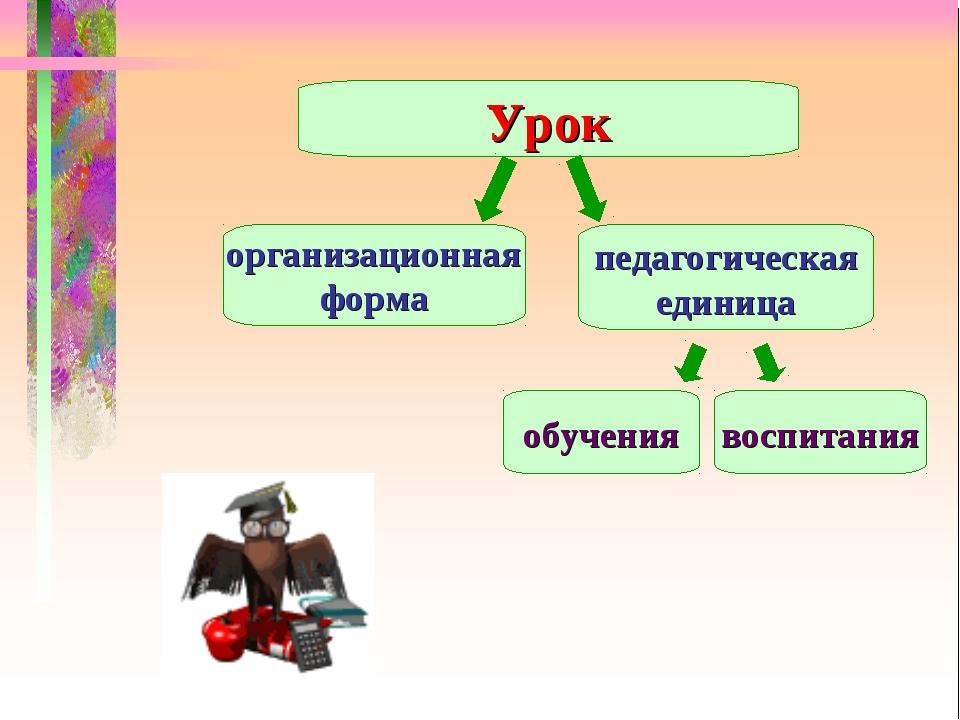 Урок организационная форма педагогическая единица обучения воспитания
