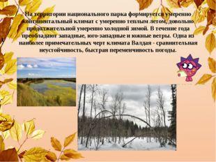На территории национального парка формируется умеренно континентальный климат