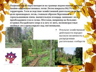 Национальный парк находится на границе подзон южной тайги и хвойно-широколист