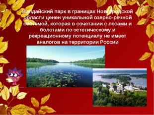 Валдайский парк в границах Новгородской области ценен уникальной озерно-речно