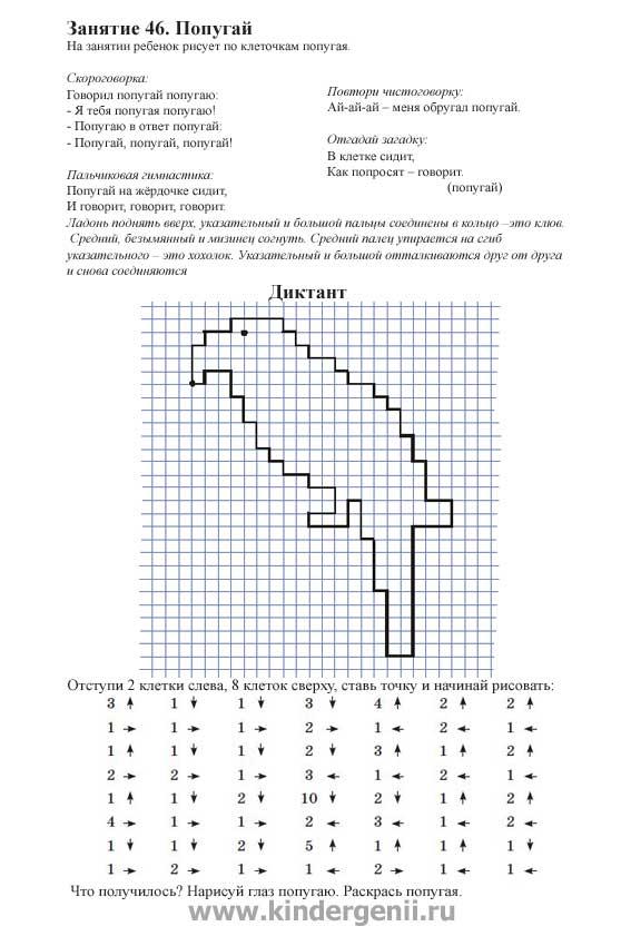 Графический диктант для дошкольников. Рисунок попугая по клеткам