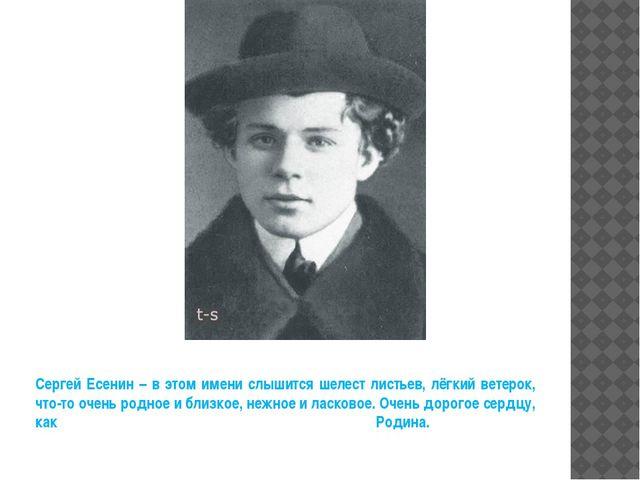Сергей Есенин – в этом имени слышится шелест листьев, лёгкий ветерок, что-то...