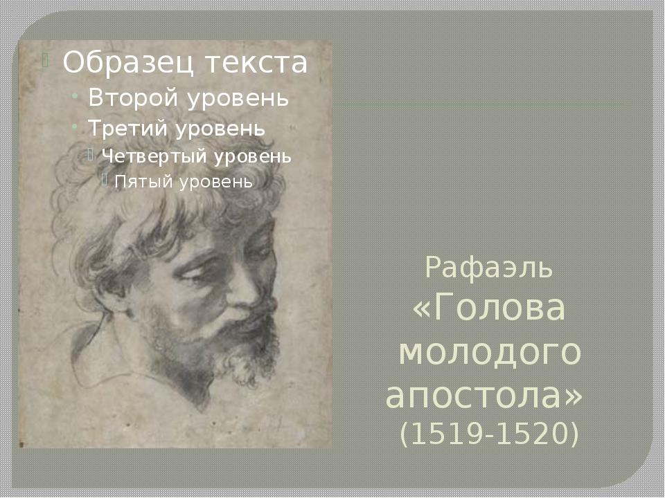 Рафаэль «Голова молодого апостола» (1519-1520)