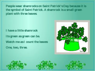 People wear shamrocks on Saint Patrick's Day because it is the symbol of Sain