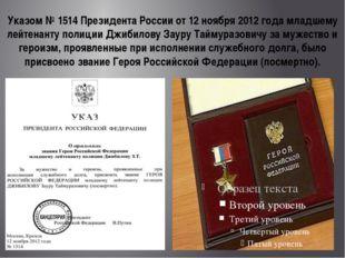 Указом №1514 Президента России от 12 ноября 2012 года младшему лейтенанту по
