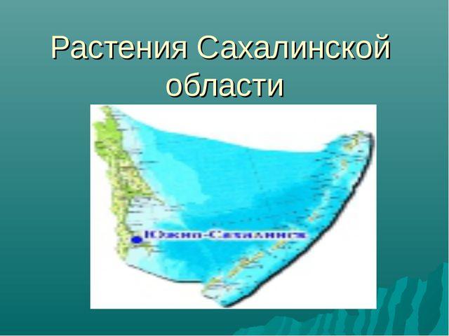 Растения Сахалинской области
