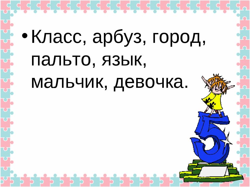Класс, арбуз, город, пальто, язык, мальчик, девочка.