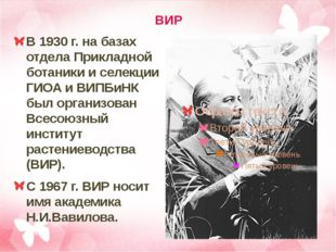 ВИР В 1930 г. на базах отдела Прикладной ботаники и селекции ГИОА и ВИПБиНК б