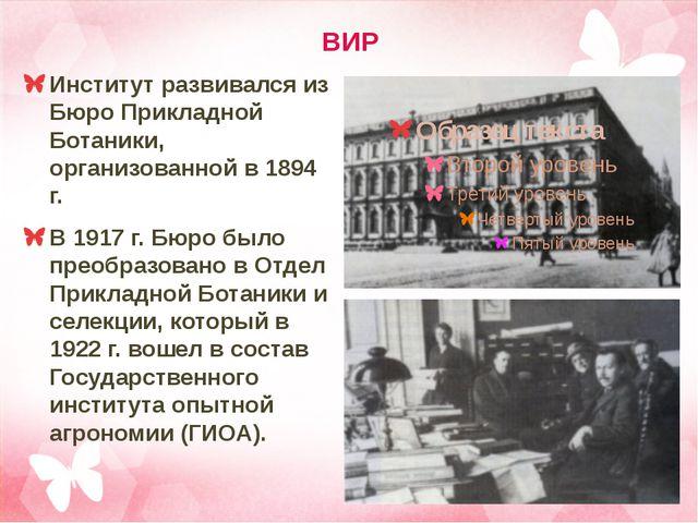 ВИР Институт развивался из Бюро Прикладной Ботаники, организованной в 1894 г....