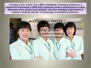 Сестры Суэл, Сeoл, Сол и Мил четверня, которые родились в корейской больнице