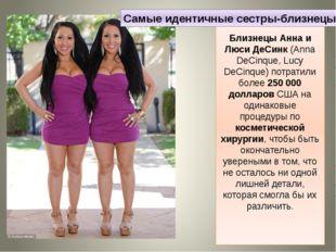 Близнецы Анна и Люси ДеСинк (Anna DeCinque, Lucy DeCinque) потратили более 25