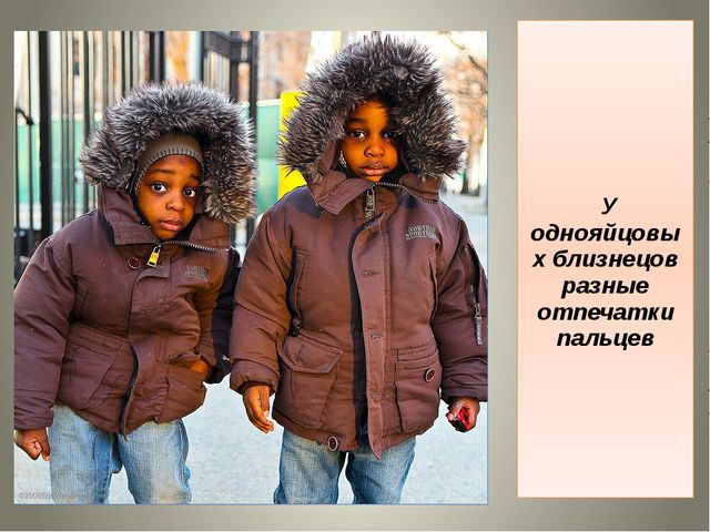 У однояйцовых близнецов разные отпечатки пальцев