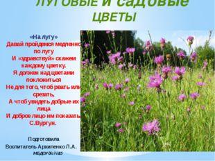 ЛУГОВЫЕ и садовые ЦВЕТЫ «На лугу» Давай пройдемся медленно по лугу И «здравст