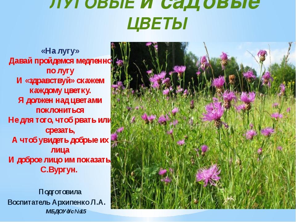 ЛУГОВЫЕ и садовые ЦВЕТЫ «На лугу» Давай пройдемся медленно по лугу И «здравст...