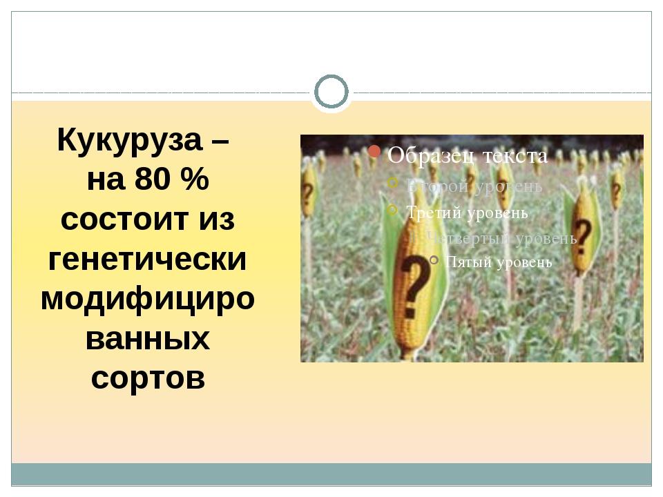 Кукуруза – на 80 % состоит из генетически модифицированных сортов