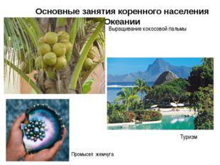 Основные занятия коренного населения Океании Выращивание кокосовой пальмы Про