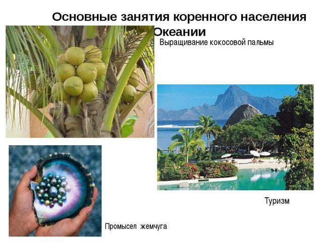 Основные занятия коренного населения Океании Выращивание кокосовой пальмы Про...