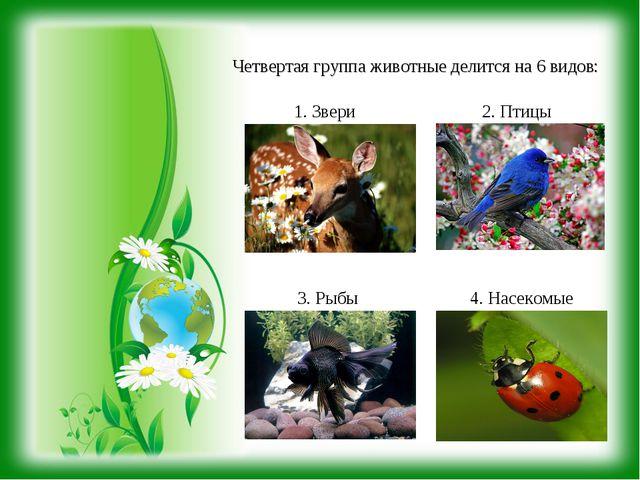 Четвертая группа животные делится на 6 видов: 1. Звери 2. Птицы 3. Рыбы 4. На...