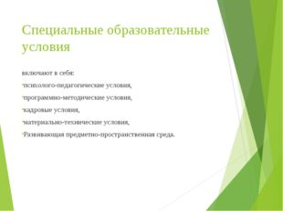 Специальные образовательные условия включают в себя: психолого-педагогические