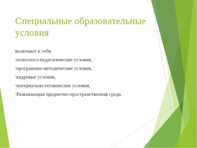 Специальные образовательные условия включают в себя: психолого-педагогические...