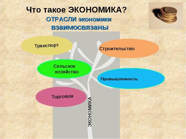 Что такое ЭКОНОМИКА? ЭКОНОМИКА ОТРАСЛИ экономики взаимосвязаны