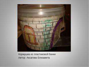 Кормушка из пластиковой банки Автор: Аксагова Елизавета