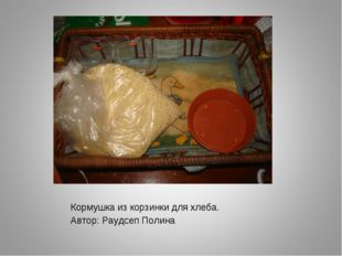 Кормушка из корзинки для хлеба. Автор: Раудсеп Полина