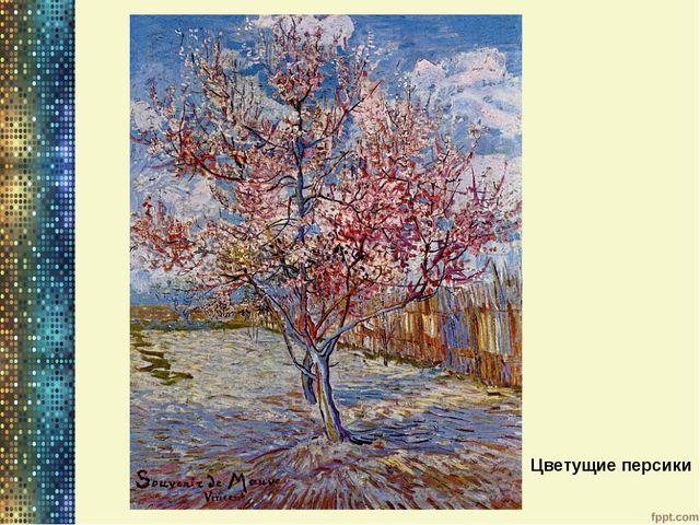 Цветущие персики