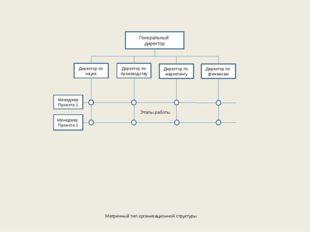 Матричный тип организационной структуры Генеральный директор Директор по наук
