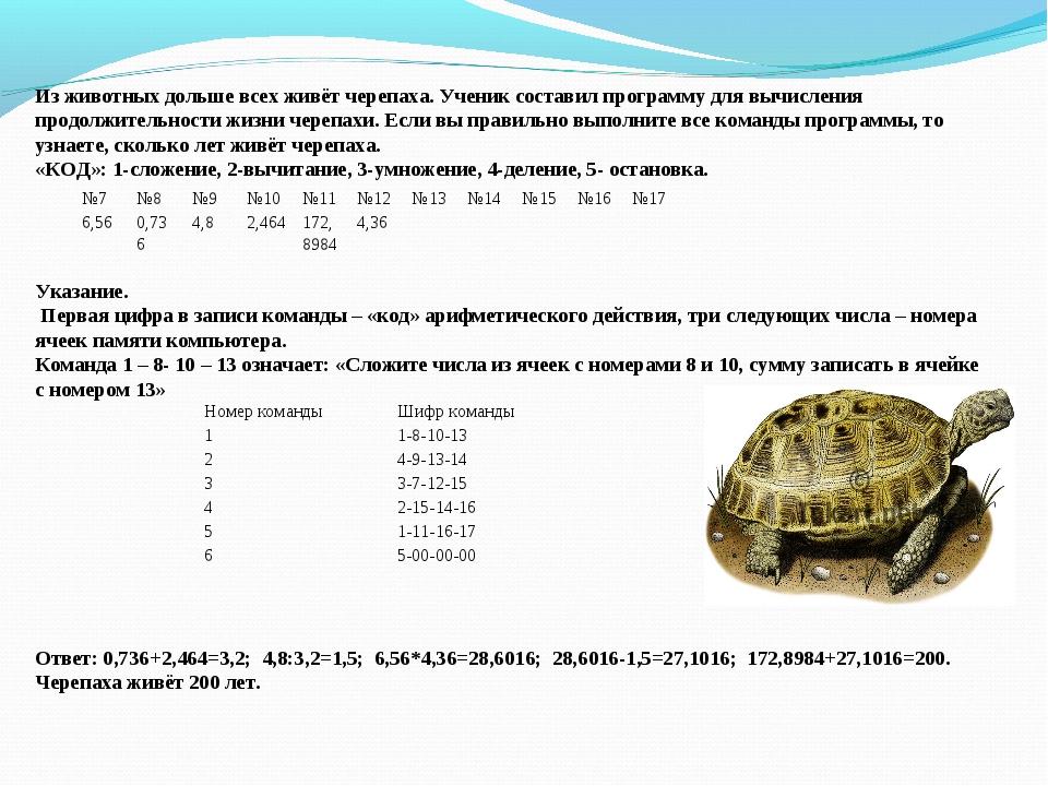 Из животных дольше всех живёт черепаха. Ученик составил программу для вычисле...