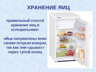 правильный способ хранения яиц в холодильнике: яйца направлены вниз своим ост